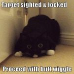 Target Sited But Wiggle