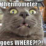 Thermometer Goes Where