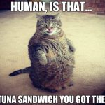 Is That Tuna Sandwich